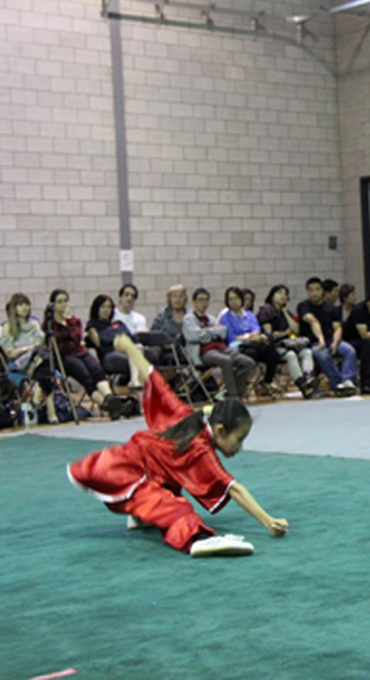 kung fu posture