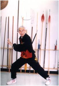 kung fu2